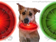 Nite Ize LED Dog Discuit