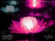 Water Lily LED Pond Light