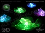 Froggy Pad Pond Light