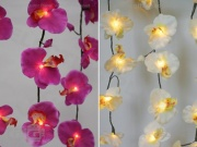 Orchid LED Light Curtain